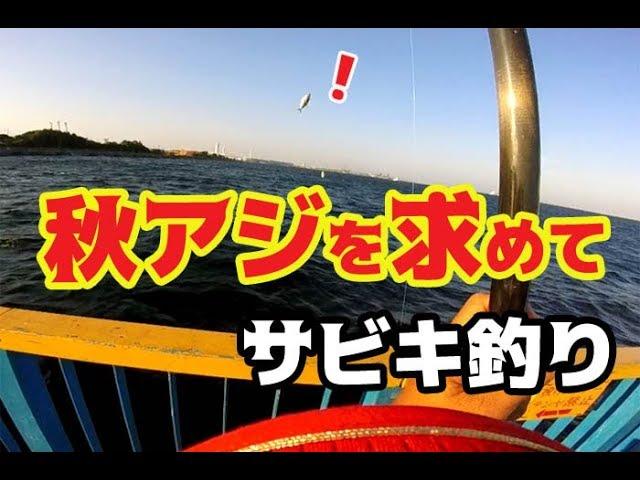 ??????????????For the Japanese jack mackerel