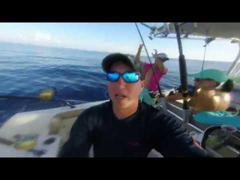 Reel Estate - Marathon Florida Keys Dolphin - June 29, 2017
