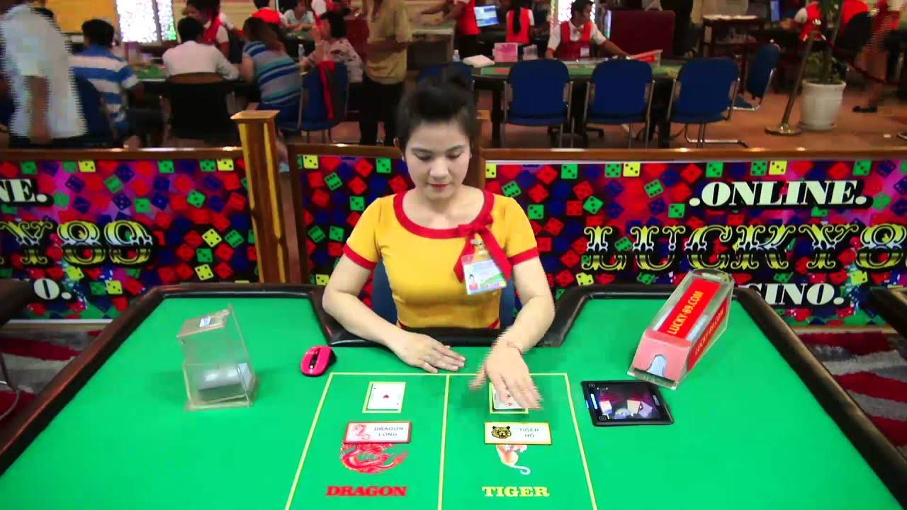 Casino Tiger Dragon