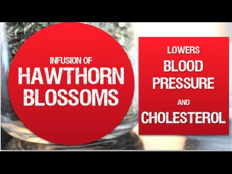 Health benefits of Hawthorn Blossom | Herbal Medicine