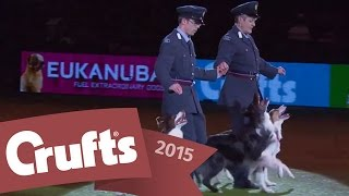 Heelwork to Music - Mary Ray's 2015 Performance | Crufts 2015