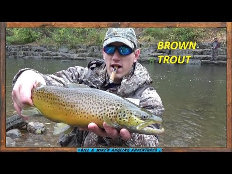 October BROWN TROUT Fishing - TROUT BEADS