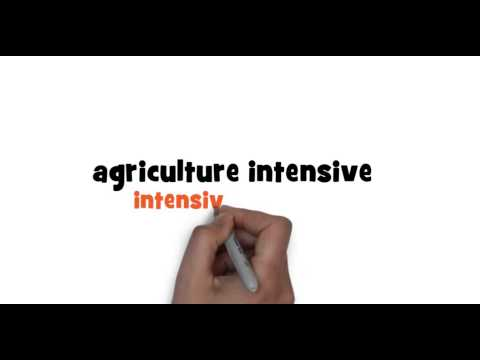 How to write intensive farming in French
