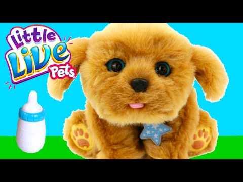 little-live-pets-snuggles-interactive-puppy-stuffed-animal