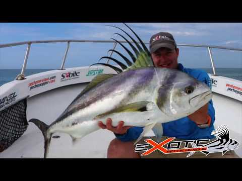 CABO SAN LUCAS FISHING FOR BIG ROOSTERFISH