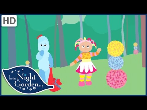 In the Night Garden - Storytime: Pretty Flowers and the Ninky Nonk