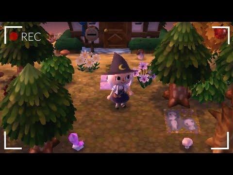AC:NL Dream Towns + Multiplayer Live Stream (*^▽^*)