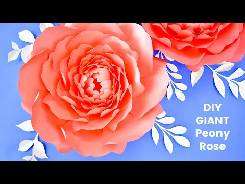 Giant Paper Peony Rose Step by Step Tutorial - Gwendolyn Style Peony with Abbi Kirsten