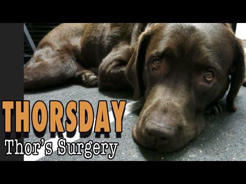 Thorsday - Thor's Surgery