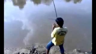 ikan besar / monster fish