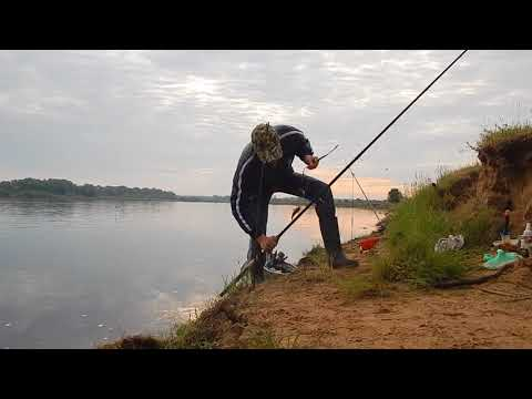 ловля карпа на фидер в беларуси видео