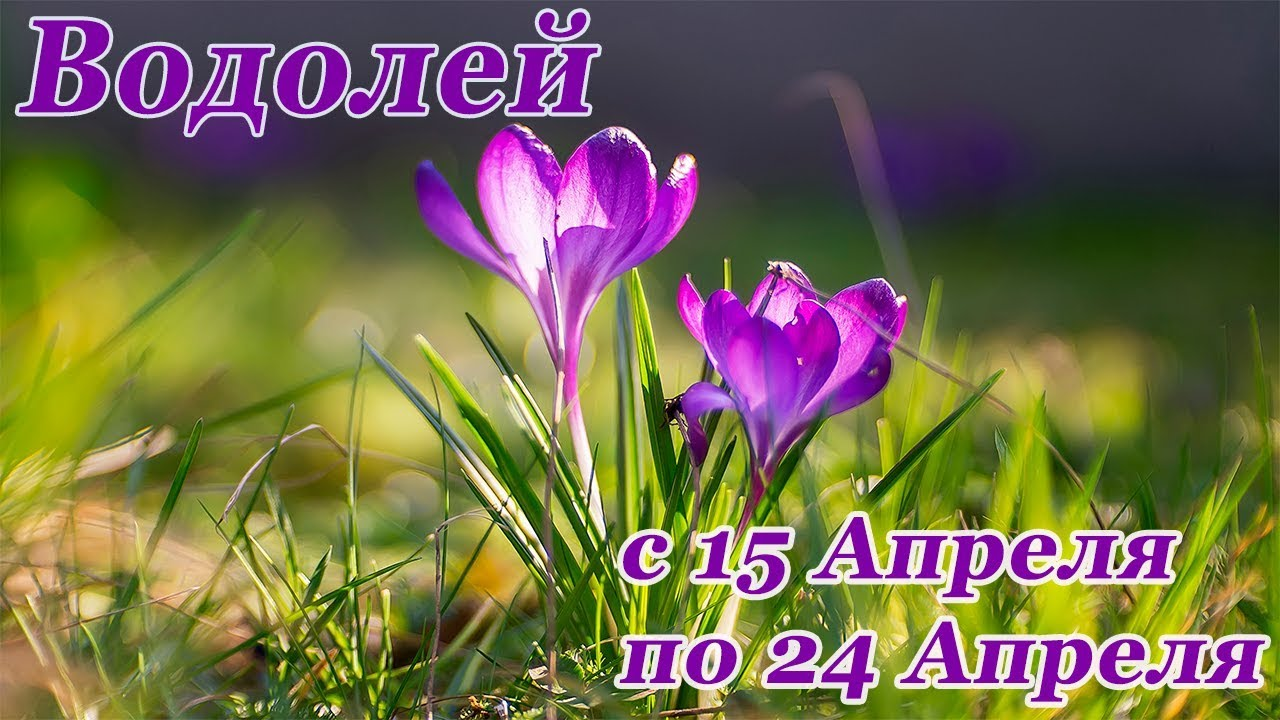 ВОДОЛЕЙ. гороскоп-расклад на 15,16,17,18,19,20 Апреля 2019 года. ЛенорманТаро ОНЛАЙН гадание.
