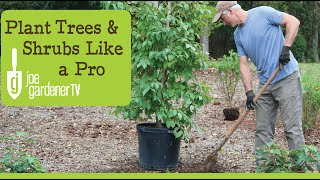 How To Plant Tręes and Shrubs Like a Pro