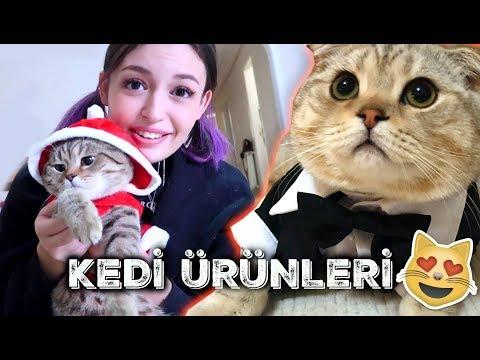 ÇILGIN KEDİ ÜRÜNLERİNİ DENEDİK! ft BEHLÜL, YASU!
