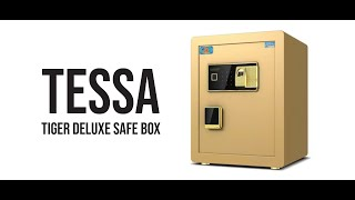 Tessa Tiger Deluxe Commercial Safety Box (w Finger Print)