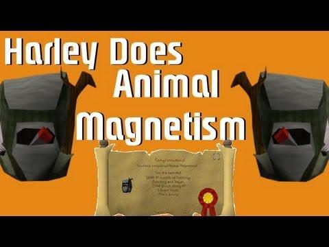 Animal Magnetism quick guide - runescape.fandom.com