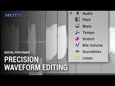 DP 10 Waveform Editor