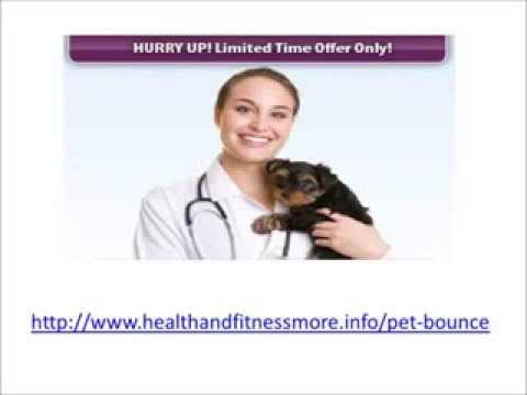 Pet Bounce Review, Joint Pain Relief Specifically Formulated Multivitamins Natural Supplement
