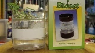 Grow Sprouts Indoors - Gardening - BikemanforU & Mr. Pump