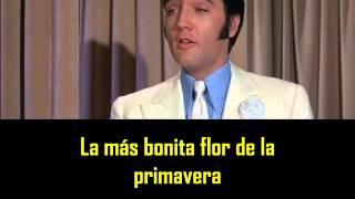 ELVIS PRESLEY -  Violet ( con subtitulos en español )  BEST SOUND