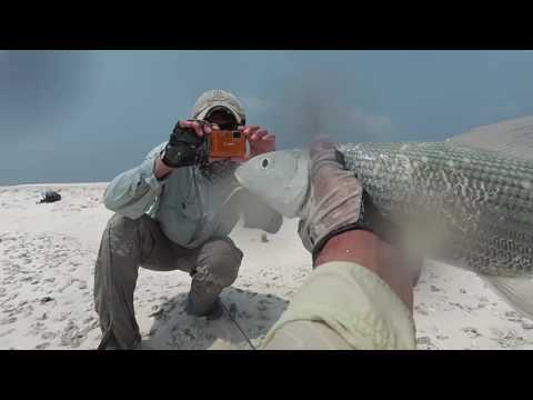 Sport Fishing Asia Compilation I