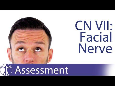 Pediatric Facial Nerve Weakness.