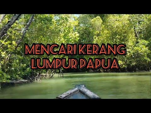 Mencari Kerang Lumpur Papua