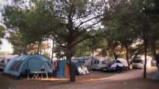 Dalmacija Camp - Der Familienfreundliche Camping-Platz