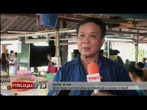 ธ.ก.ส.หนุนสินเชื่อ 1 ตำบล 1 SME เกษตร