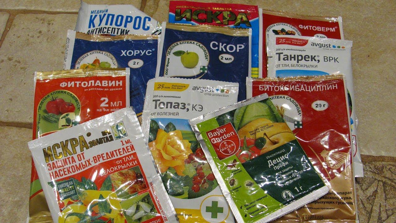 Собираем садовую аптечку  Часть 2  Препараты от болезней