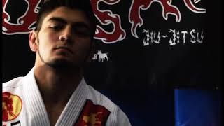 Bull Terrier Fight Gear Pv With Bonsai Jiu-jitsu