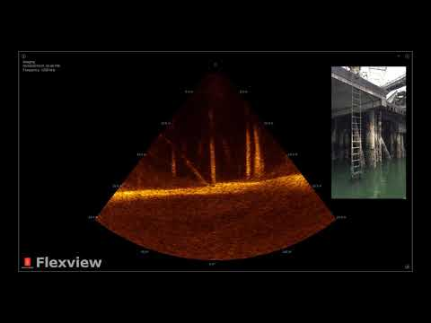 Structure inspection of bridge pilings using KONGSBERGs Flexview multibeam sonar at 1200 kHz