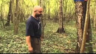 Рейтинг Баженова :Самые опасные животные России  5 серия
