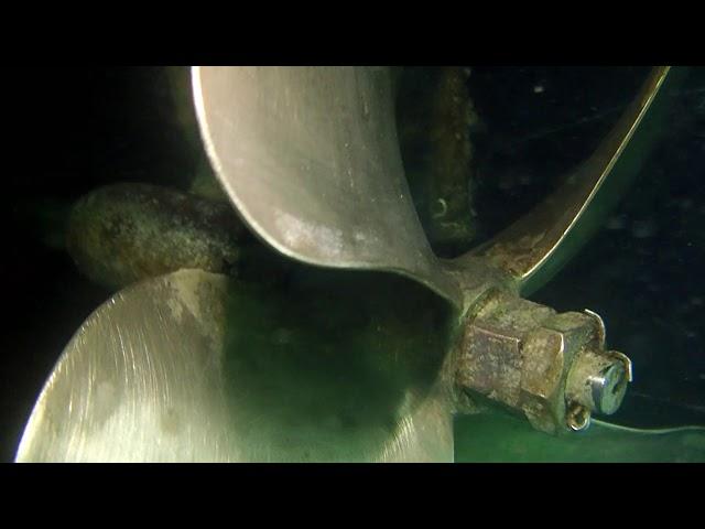 Sea Batical 01/07/21