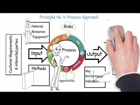 Seven Quality Management Principles