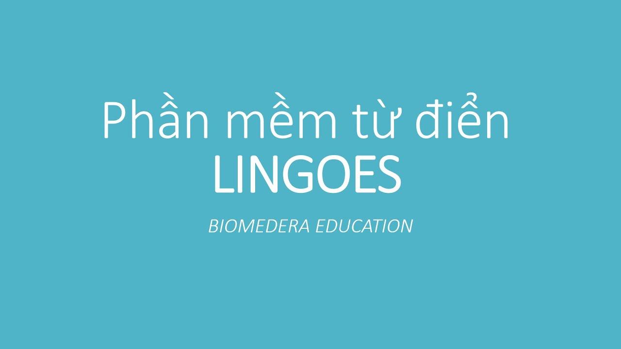 Hướng dẫn cài đặt và sử dụng từ điển Lingoes – Miễn phí, Chuyên nghiệp và Mạnh mẽ