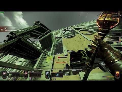 Warhammer  End Times: Vermintide - Black Powder Cata |