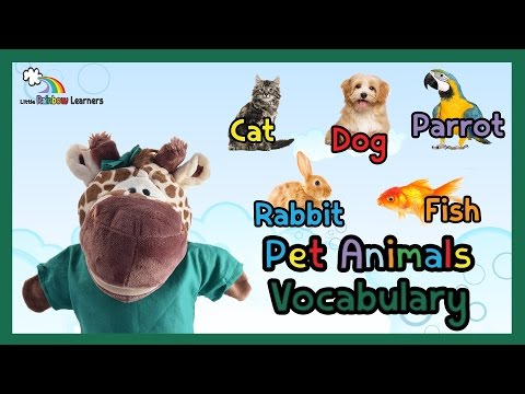Pet Animals Vocabulary for Preschool, Kids, ESL and Children with Autism