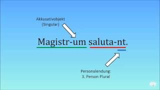 Latein Basics — Latein übersetzen I