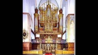 """Max Reger """"Hallelujah! Gott zu loben, bleibe meine Seelenfreud!"""" op. 52, no. 3 Uzhvi Natalia"""