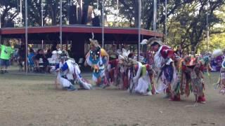 Snake dance Winnebago pow wow 2016