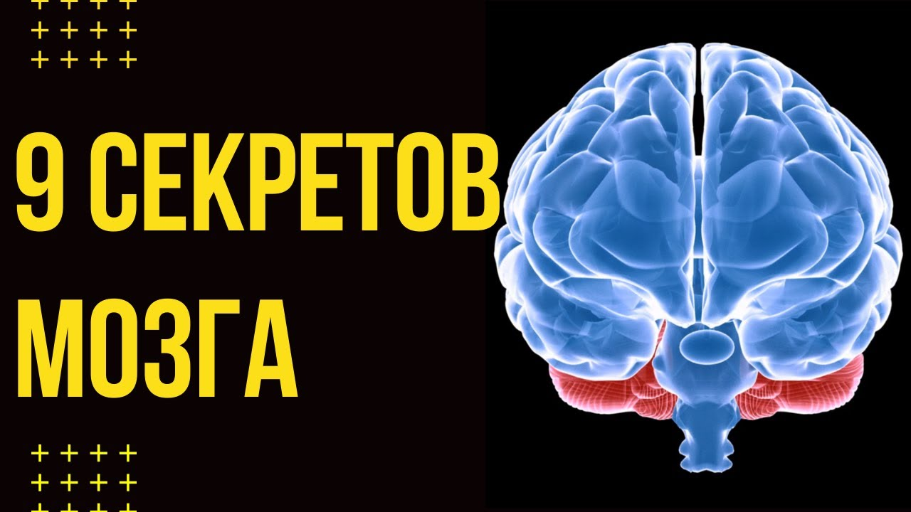 ЭТО ВИДЕО ИЗМЕНИТ ТВОЮ ЖИЗНЬ. 9 секретов мозга