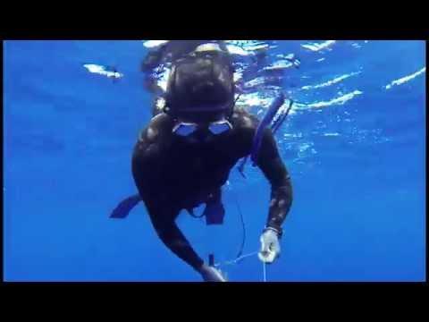 Spearfishing St Helena Island