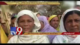 Protest against power grid project turns violent in West Bengal - TV9