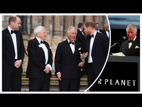 Princes William & Harry Join Charles As He Gives Speech At 'Our World' Premiere