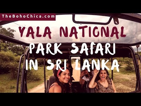 YALA NATIONAL PARK SAFARI SRI LANKA - The BohoChica Travel Vlog