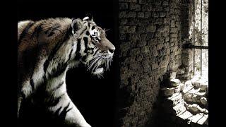 Neoliberalismus - Die Erklärung (Reupload 2015)