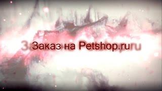 Заказ на Petshop.ru №2