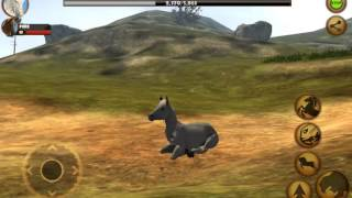 Ultimate Horse Simulator:  is the Best in Show!