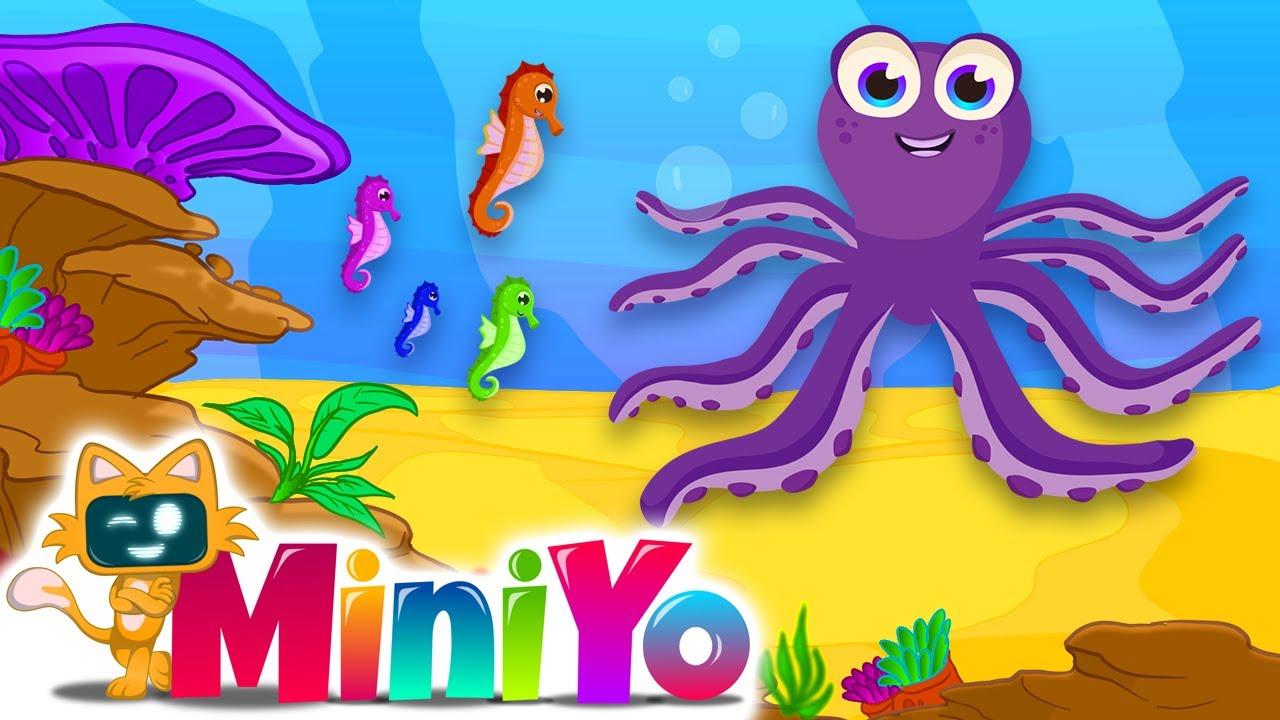 Ahtapot   Denizatı   Denizanası + Daha Fazla Çocuk Şarkısı   Miniyo